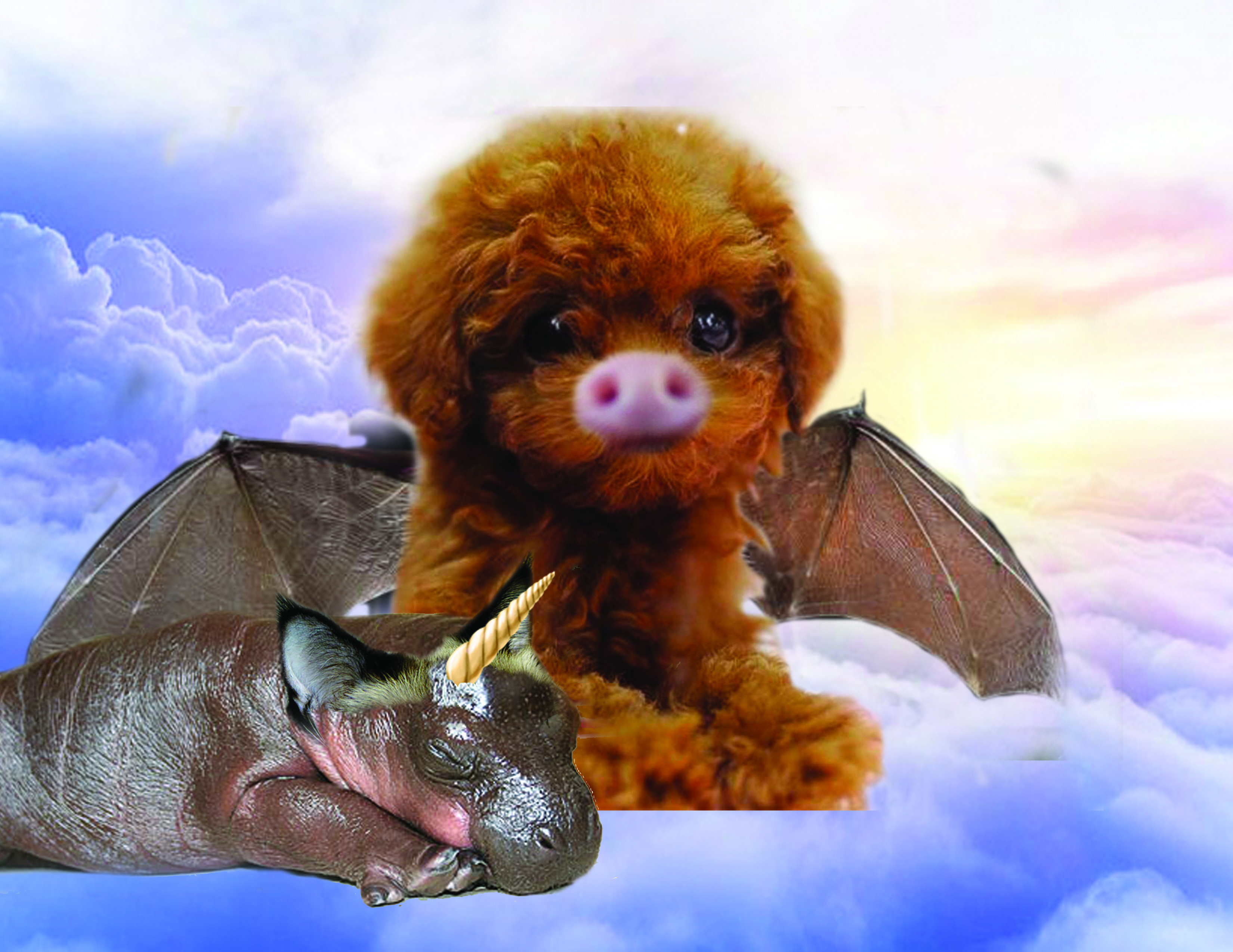 puppy and hippo creatures